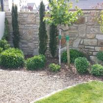 Gerade gepflanzt und schon fertig, dieses Foto entstand unmittelbar nach der Fertigstellung: Natursteinmauer, Mulchbeet und Pflanzkonzept