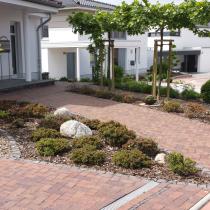 Pflasterwege mit Graniteinfassung, pflegeleichte Mulchbeete mit geringer Wuchshöhe und Findlingen, Magnolie und Bäumen